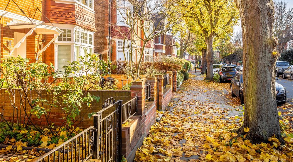 Baltimore City Fall Yard Maintenance Checklist